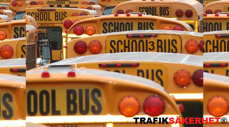 skolbuss